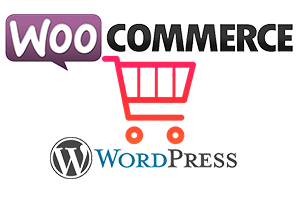 ecommerce website design with WordPress and Woocommerce